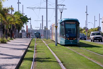 Tranvía en circulación cerca de la parada Intercambiador (Santa Cruz).